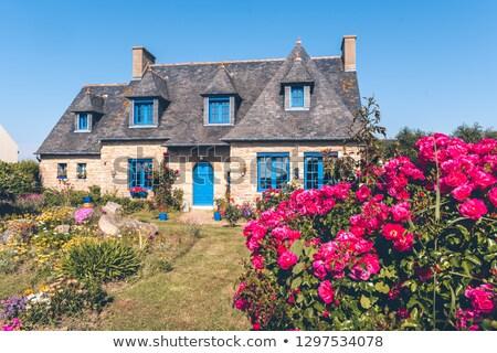 histórico · edificio · flores · Windows · entrada · de · coches · casa - foto stock © xantana