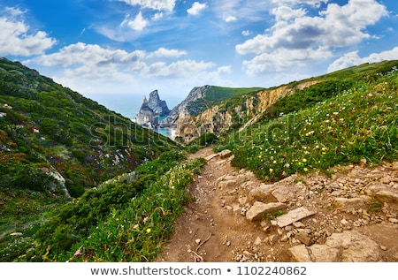 Picturesque track on Cape Roca, Portugal Stock photo © vlad_star
