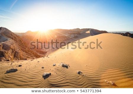 LA · Chile · tájkép · sivatag · narancs · kék - stock fotó © daboost