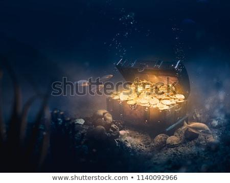Schatztruhe Unterseite Meer Illustration Geld Fisch Stock foto © adrenalina