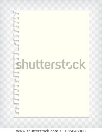ストックフォト: Empty Checkered Note Book Page With Torn Edge