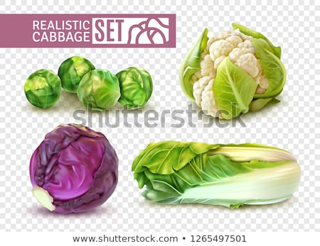 Green Sprout Set Transparent Background Stock photo © barbaliss