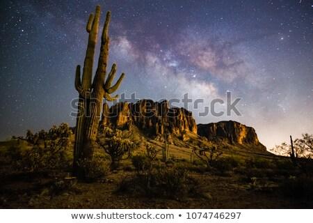 Arizona Landscape at Night Time Stock photo © bluering