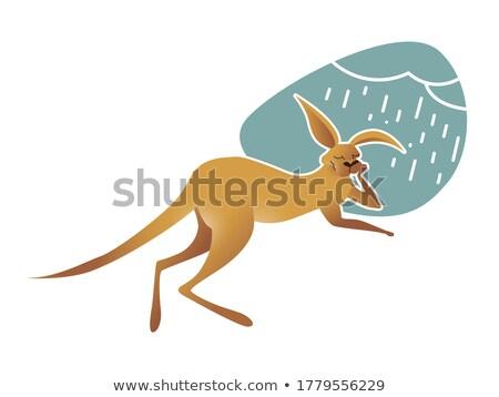 Cartoon kangoeroe vervelen illustratie dier Stockfoto © cthoman