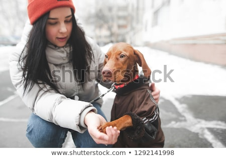 Woman and dog giving high-five in the snow Stock photo © Kzenon