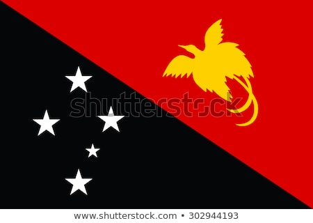 Папуа-Новая Гвинея флаг вектора белый текстуры фон Сток-фото © butenkow