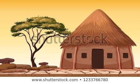 Tradicional cabaña desierto ilustración casa edificio Foto stock © colematt