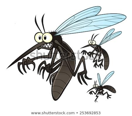 zangado · mosquito · desenho · animado · branco · sangue · saúde - foto stock © hittoon