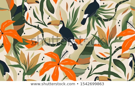 a toucan in nature green template stock photo © bluering