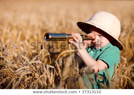 Szafari fiú távcső illusztráció tűz könyv Stock fotó © colematt