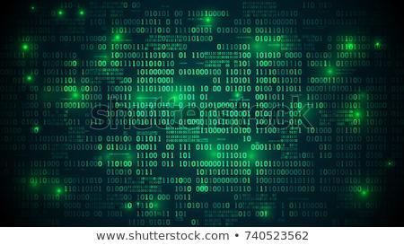 Bináris kód digitális illusztráció technológia globális háló illusztráció Stock fotó © alexaldo