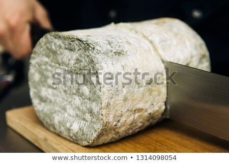 Mild blue Auvergne cheese Fourme d' Ambert from France Stock photo © boggy