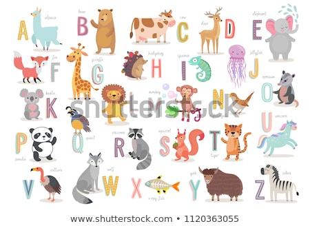 Rajz ábécé aranyos állatok illusztráció színes szett Stock fotó © izakowski