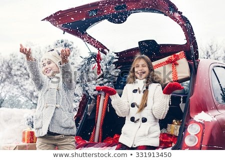 Natale · shopping · inverno · vacanze · preparazione · vettore - foto d'archivio © robuart