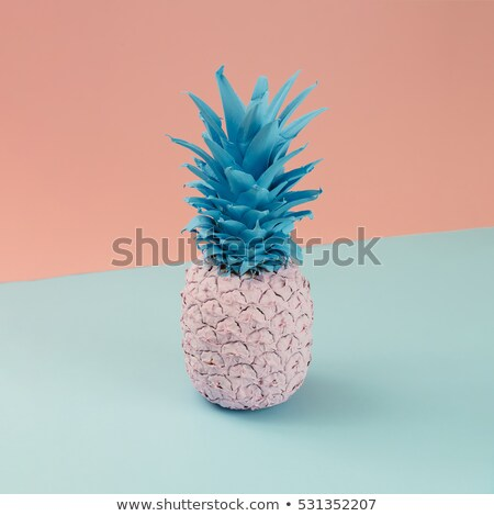 Ananas fruits style deux mains Photo stock © neirfy