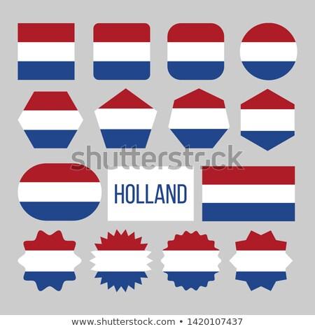 Holland zászló gyűjtemény alkat ikon szett vektor Stock fotó © pikepicture