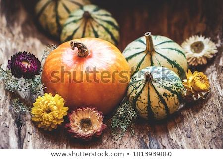 Осенний сезон украшение благодарение Хэллоуин лист фон Сток-фото © galitskaya