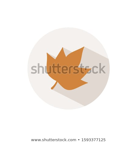 Autumn leaf. Icon with shadow on a beige circle. Fall vector illustration Stock photo © Imaagio