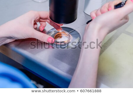 Modern researcher dropping liquid substance into petri dish with green plant Stock photo © pressmaster