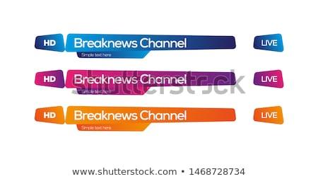stylish lower third banner template design set Stock photo © SArts