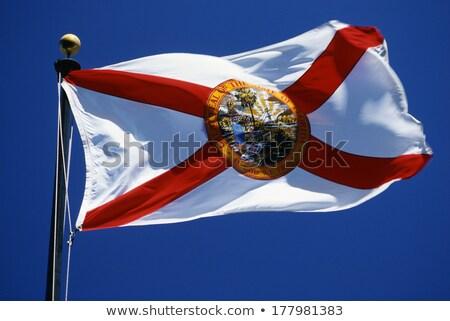 Vlag Florida alle communie lagen Stockfoto © nazlisart