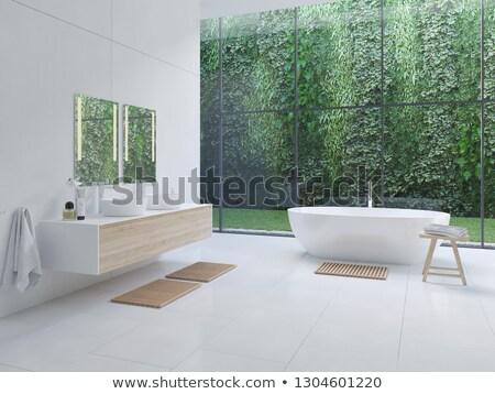ванную Открытый домой синий интерьер голову Сток-фото © stoonn