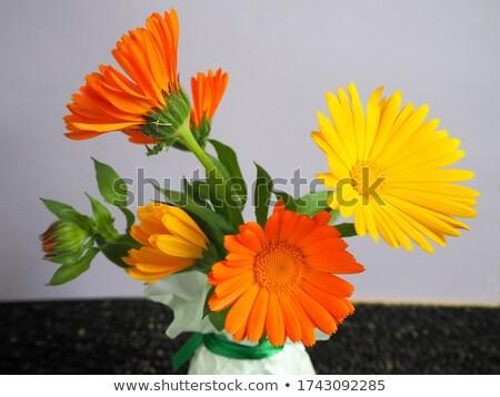 tournesols · vase · bouquet · jaune · métal · fleurs - photo stock © frankljr