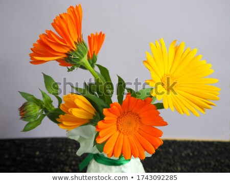 girassóis · vaso · buquê · amarelo · metal · flores - foto stock © frankljr