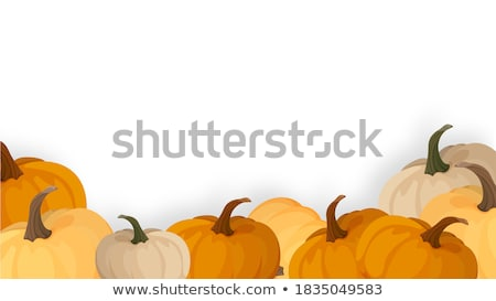 Frame of Fruits and Autumn Yield Stock photo © zhekos
