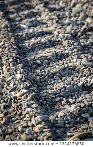 小 地形 車両 ビーチ ストックフォト © acidgrey