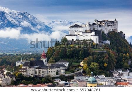 folyó · óváros · hazugság · zöld · dombok · Ausztria - stock fotó © michey