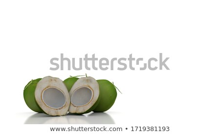 Palm Backgournd Stock photo © thisboy