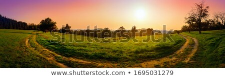 Curved path over land and sunrise Stock photo © zzve