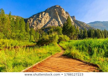 Kanyon panoráma park égbolt fa fa Stock fotó © weltreisendertj
