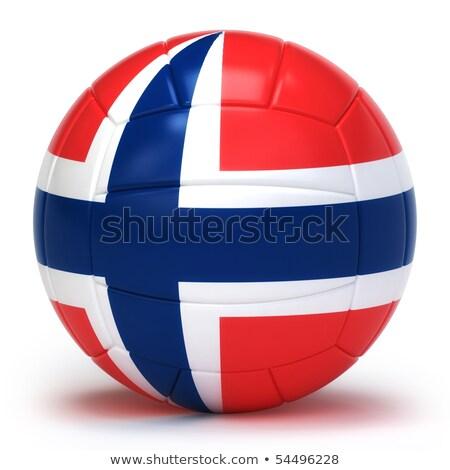 noors · volleybal · team · geïsoleerd · achtergrond - stockfoto © bosphorus