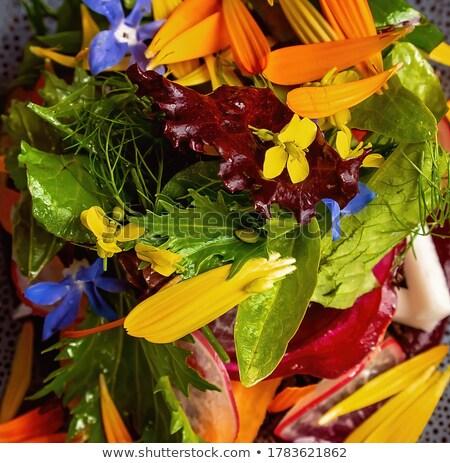 Entree garden with flowers Stock photo © ivonnewierink