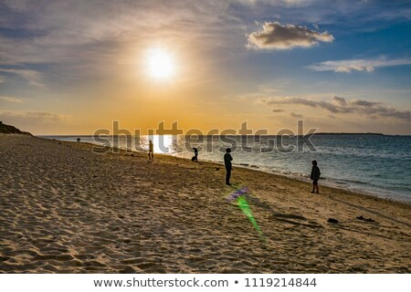 Evening beach of Okinawa stock photo © shihina