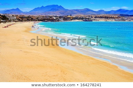 Канарские · острова · Испания · пейзаж · небе · дерево · пустыне - Сток-фото © nito