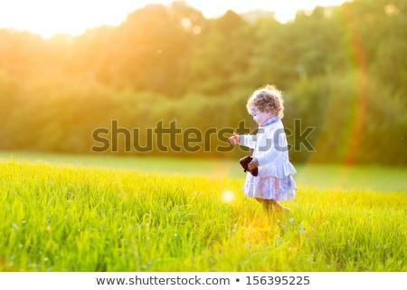 演奏 フィールド 徒歩 パス 草 在庫 ストックフォト © nalinratphi