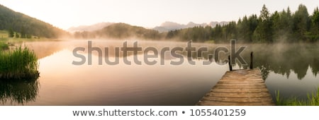 panorama of the morning mist on the lake in the woods Stock photo © uatp1