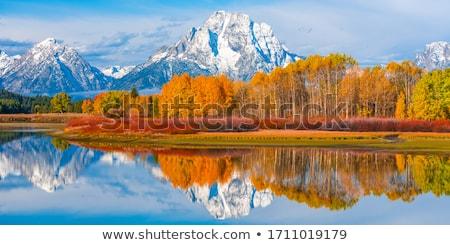 beautiful autumn lake landscape stock photo © mikko