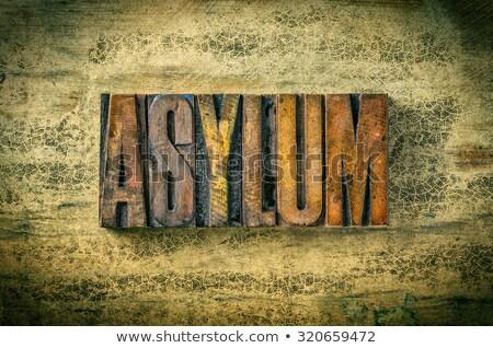 Antique letterpress wood type printing blocks - Asylum Stock photo © Zerbor