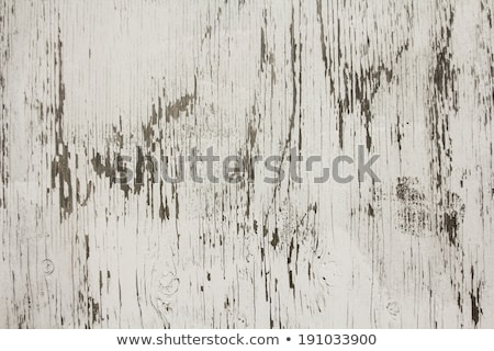 Grungy stained paint plywood Stock photo © IMaster