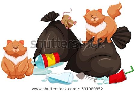 Rato gatos ilustração fundo arte garrafa Foto stock © bluering