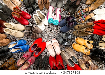 brown womens shoes stock photo © all32