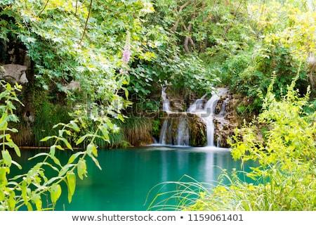 hegy · tó · kilátás · fák · víz · nyár - stock fotó © ankarb