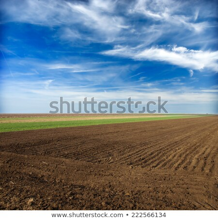 Barna mező tájkép mezőgazdaság ipar természet Stock fotó © goce