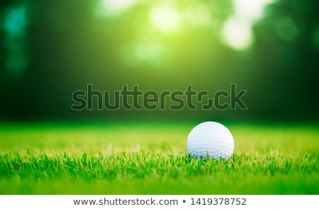 Golf sahası detay yeşil boş kırsal çim Stok fotoğraf © RazvanPhotography