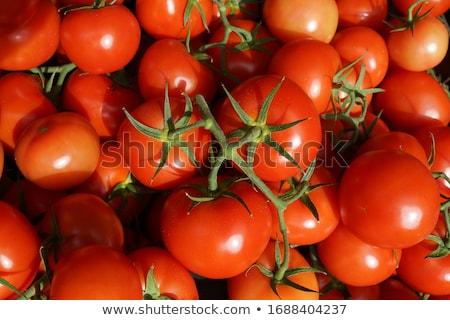赤 トラス トマト 新鮮な 孤立した ストックフォト © oblachko
