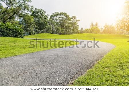 road to park stock photo © pozn